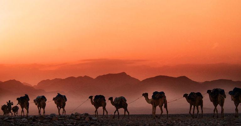 Foto einer Düne in der Wüste