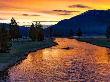 Wie findet man Gold in einem Fluss?